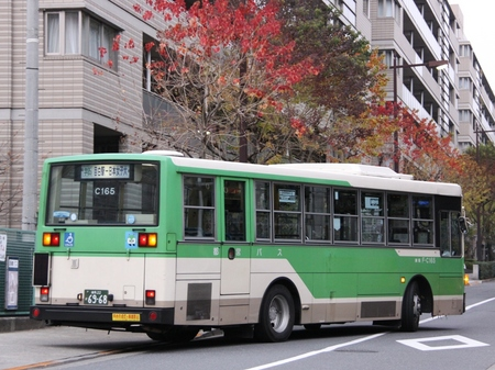 C165.3.jpg