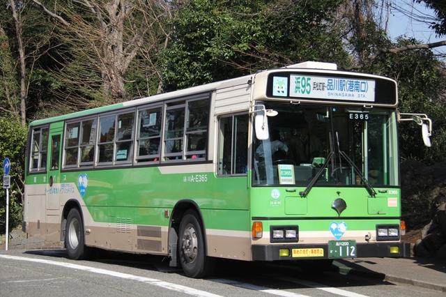 A-E365.01.jpg
