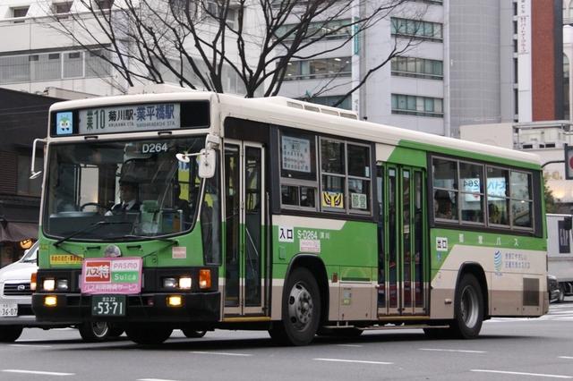 D264.5.jpg