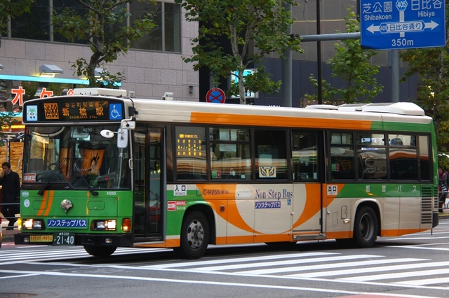 H255.91.jpg